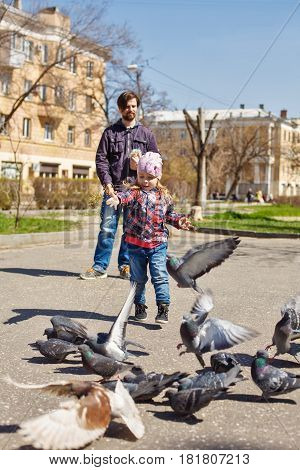 Father and daughter on a walk are fed in a park of pigeons. Caring for animals. Pigeons fly to peck the grain.