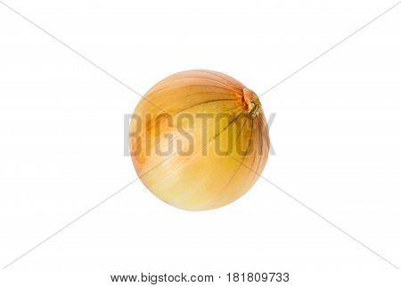 Fresh onion isolated on white background .