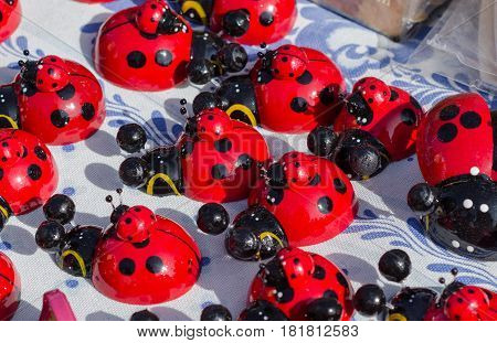 Many Ladybugs Close Up At The Fair