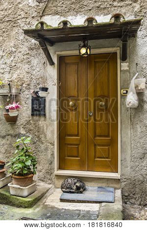 Tipical Italian entrance door with plants post box cat on doormat and hanging bags.