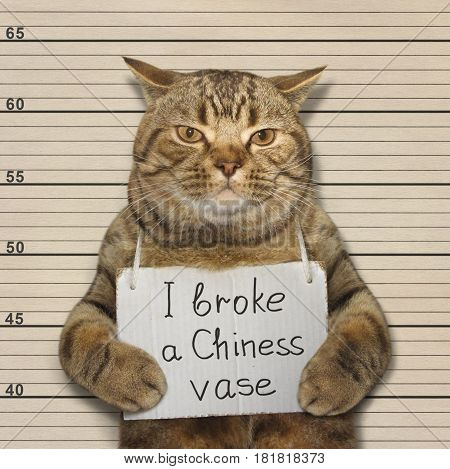 The bad cat broke a old Chinese vase. He went to prison for it.