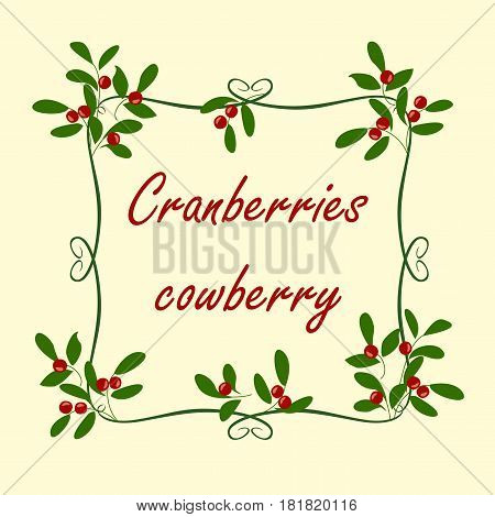 Vector background with branches, berries and leaves cranberries.