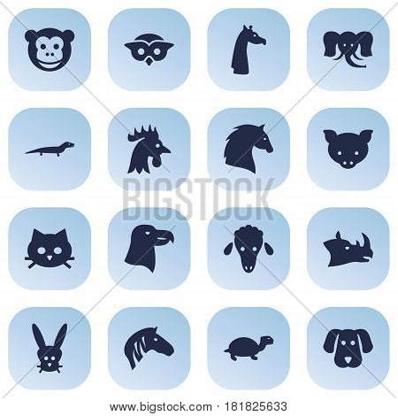 Set Of 16 Beast Icons Set.Collection Of Rhinoceros, Hog, Camelopard And Other Elements.