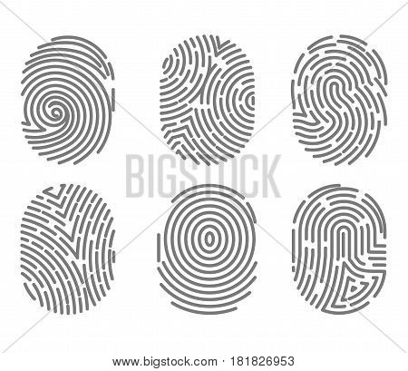 Set of fingerprint types with twisted lines signs isolated on white vector illustration in flat design. Black dactylogram, person identification marks for documents, personal identity symbols