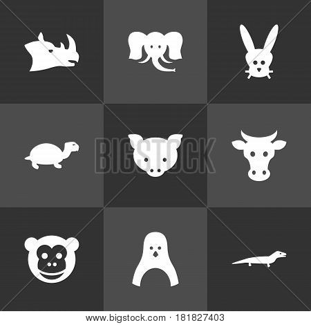 Set Of 9 Beast Icons Set.Collection Of Rhinoceros, Hog, Kine And Other Elements.
