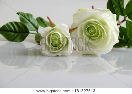 Clay White Roses Flower