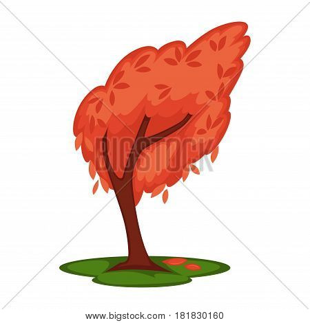 Bowed tree with red leaves isolated on white. Vector colorful illustration in flat design of tall wood in windy cold weather in autumn season with falling foliage on green land. Nature template