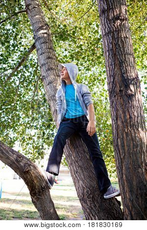 Teenager on the Tree in the Summer Park