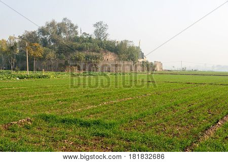 Henan, China - Nov 17 2014: Erlitou Culture Remains. A Famous Historic Site In Yanshi, Henan, China.