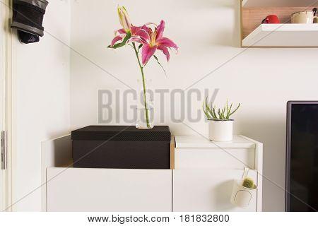 Image decoraterd modern interior in living room
