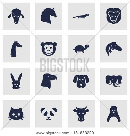 Set Of 16 Brute Icons Set.Collection Of Kine, Hound, Bear And Other Elements.