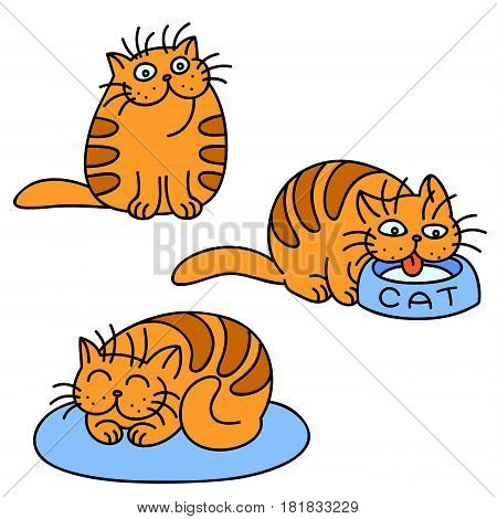 Orange cats emoticons set. Funny cartoon cool character. White Color Background. Cheerful Kitten Collection for Web Icons and Shirt. Isolated Vector Illustration.