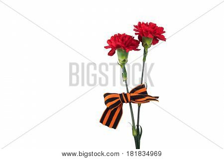 Carnation flowers and St. George ribbon concept isolated on white background