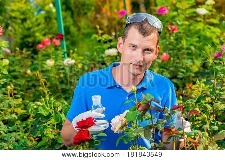 A Specialist In A Glove With A Test Tube Takes A Flower For Analysis