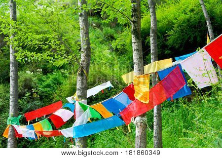 Huzhu, China - Jul 7 2014: Prayer Flags At Gonlung Champa Ling(youningsi). A Famous Monastery In Huz