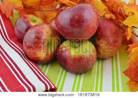 Display of Cortland apples autumn harvest and fall color leaves and striped towels