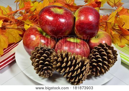 Display of Cortland apples autumn harvest and fall color leaves with pine cones on a white plate