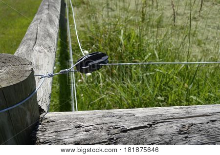 Rural wooden fencing with electric wire attachment and fastening configuration on a sunny summer day