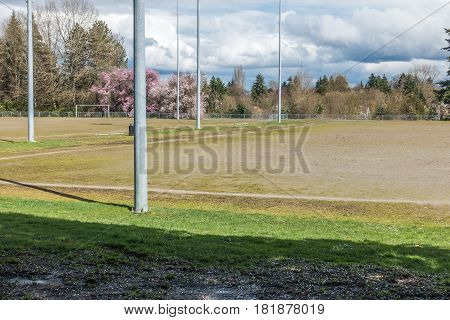 A view of a ball field and Cherry trees in Seatac Washington.