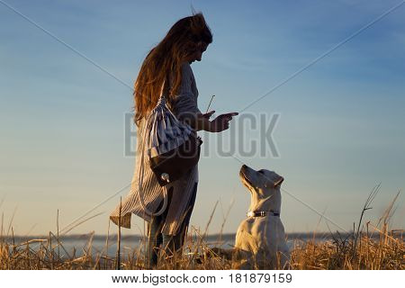 young woman teaches a cute labrador retriever dog puppy on the beach by sunset
