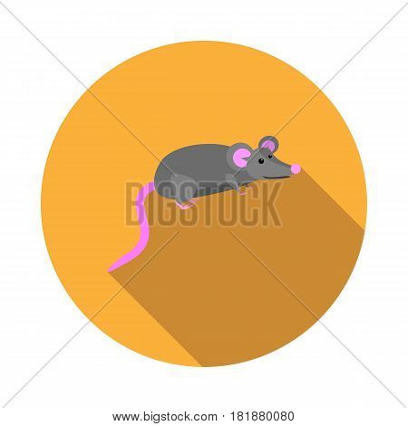 Vector image mouse on a round basis