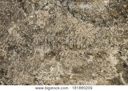 Texture hard stone and rocks with cracks and dirt covered with moss suitable for background