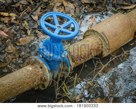 Old drink water pipe used blue gate valve.