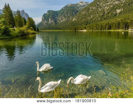 Summer landscape with peaceful lake and mountains in background.Lago di Dobbiaco,Italy.Dolomites are on UNESCO World Heritage List.