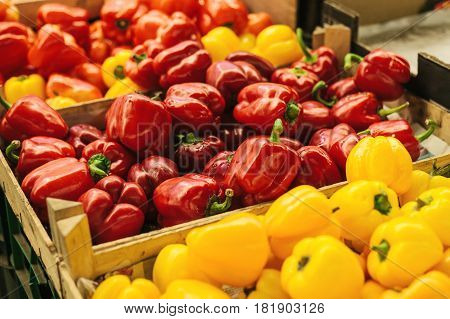 Paprika. Pepper. Fresh and organic vegetables at farmers market. Marketplace. Natural produce. Seasonal products.