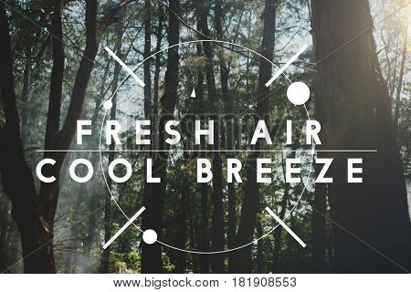 Fresh Air Cool Breeze Holiday Vacation Relaxation