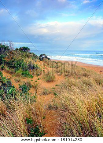 Beautiful sandy beach along the Pacific coastline of Warrnambool Australia