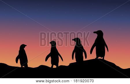 At night penguin scenery of silhouette vector art