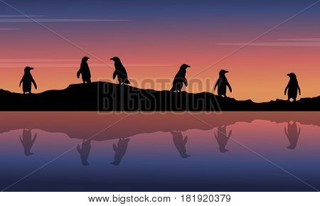 At night scenery with penguin silhouettes vector art