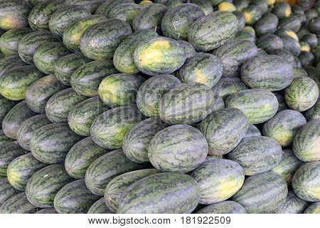 Many Big Sweet Green Watermelons In The Fruit Market.