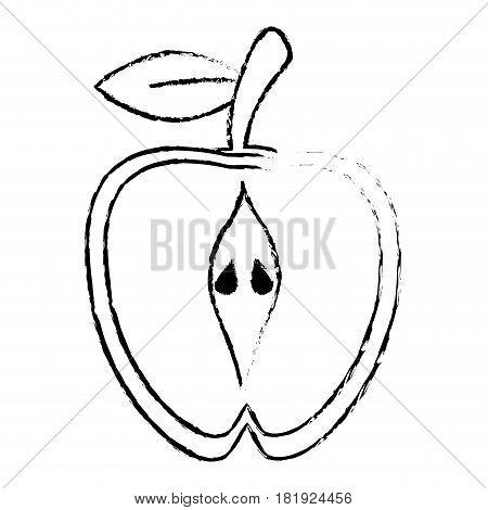 half apple food diet healthy sketch vector illsutration eps 10