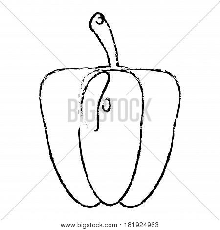pepper food diet healthy vector illsutration eps 10