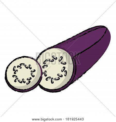 eggplant slice food diet healthy vector illsutration eps 10