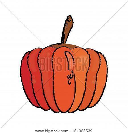 pumpkin food diet healthy vector illsutration eps 10