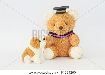 A brown bear wearing a graduation cap and a brownish white dog doll on a white background.
