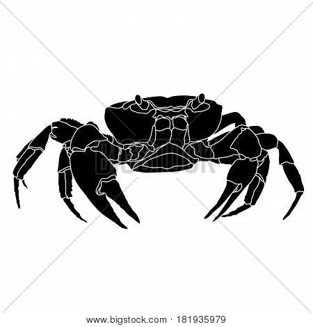 Aquatic crab, atlantic crab, gfraphic crab, ocean crab, seafood crab, icon crab, restaurant crab. Vector.