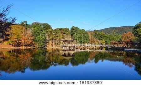 Autumn Scenery In Japanese Garden