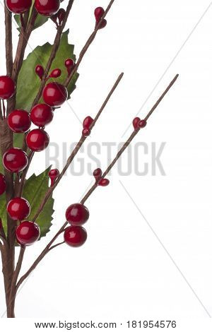 Christmas decoration with red berries and autumn leafs