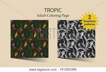 Zen and Anti stress - Coloring pages for adults. Vector seamless pattern with tropical strelitzia flowers.