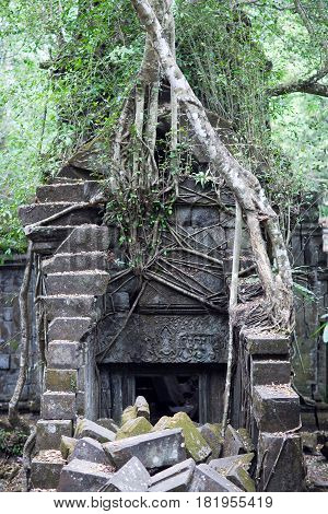 Ruins of ancient Beng Mealea Temple over jungle in Cambodia. Beng Mealea (early 12th century) is a temple located 40 km east of the main group of temples at Angkor.