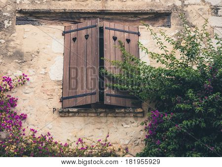 The beautiful wooden window overgrown with flowers