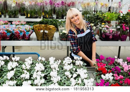 positive female seller of flower shop, smiling at the camera, standing near the shelter with a lot of potted flowers.