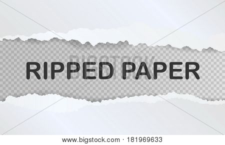 Ripped paper and transparent background with space for text, vector illustration.