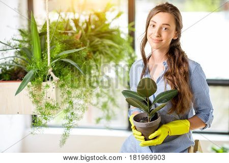 Portrait of a young female gardener holding a flowerpot in the orangery