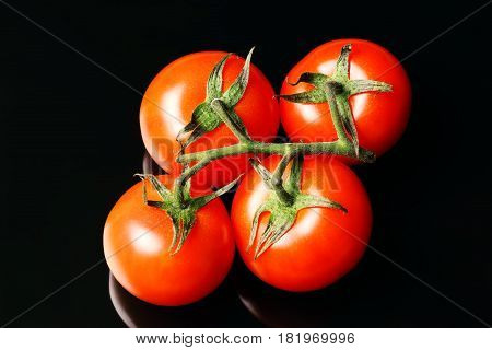 Red tomatoes on a branch isolated on a black background