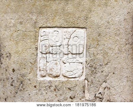 Barelief carving with Mayan inscription, pre-Columbian Maya civilization, Palenque, Chiapas, Mexico. UNESCO world heritage site
